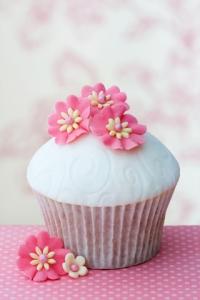 vanilla cupcake pictures
